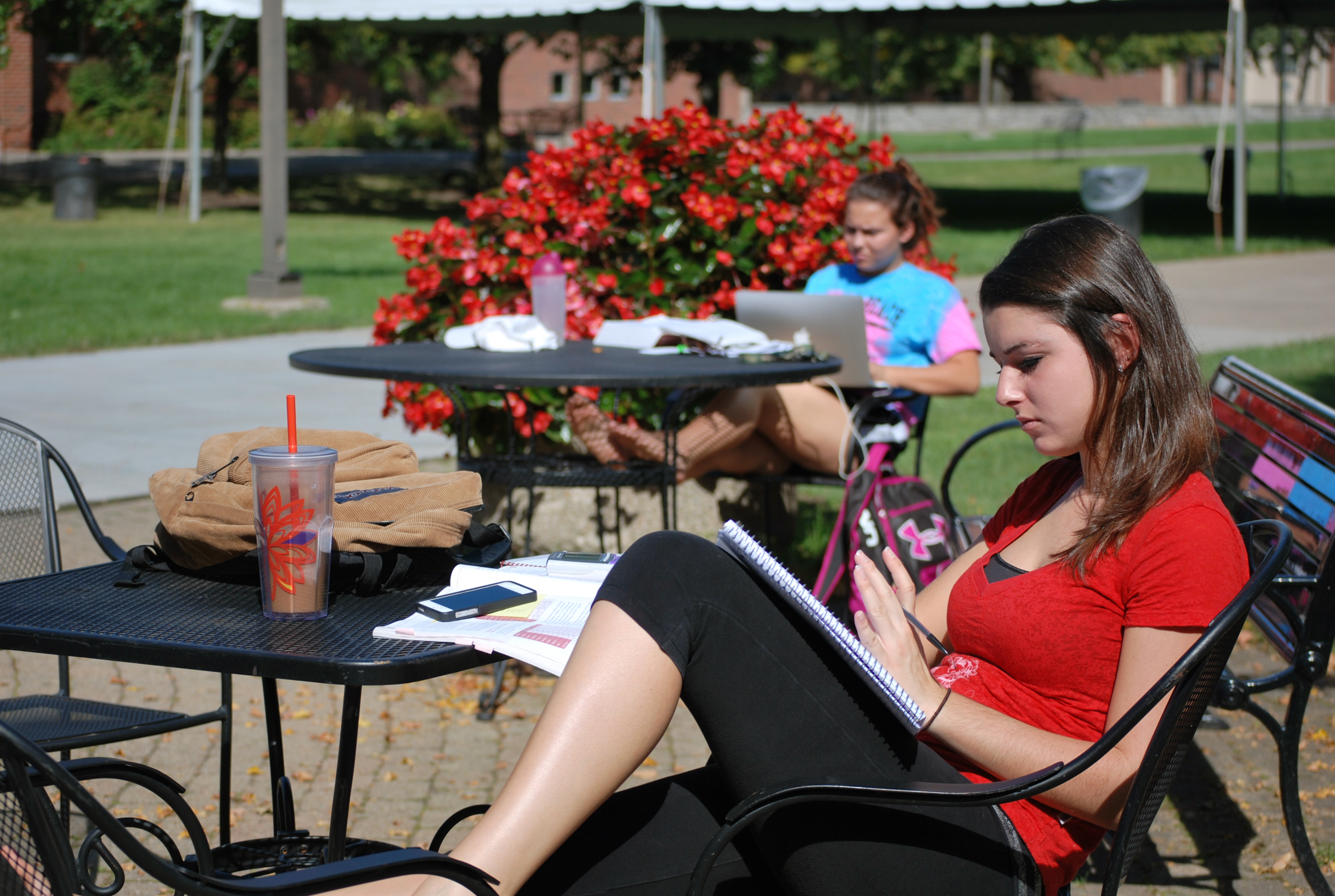Studying near the Falcone Library