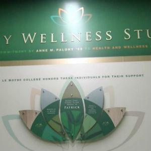 wellness'
