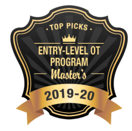 Top Entry Level OT Program
